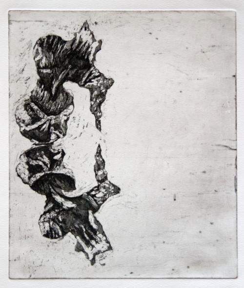 "Specimen 090924, 2009, etching, edition of 10, 15""x11"""