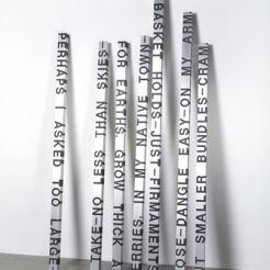 Works by Roni Horn.